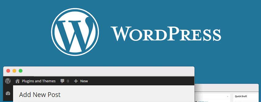 Warum ist WordPress so beliebt?